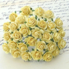 WILD ORCHID - OPEN ROSES 014 - YELLOW - 10 MM