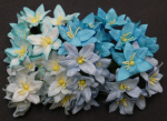 LILY FLOWERS 136 - MIXED BLUE - 40 STK