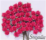 Storyteller - Rose 1524 - 14mm - rosa