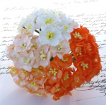 CHERRY BLOSSOMS 248 - MIXED ORANGE & WHITE - 50 STK