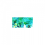 COLOURCRAFT BRUSHO CRYSTAL WATERCOLORS - SEA GREEN