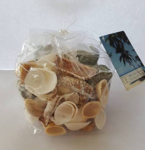 Bilde av Decoration Shells Atlantic
