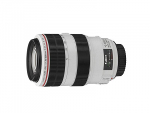 Bilde av Canon EF 70-300/4,0-5,6 L IS USM