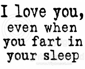 Bilde av I love you even when you fart