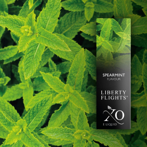Bilde av XO Spearmint 10 ml